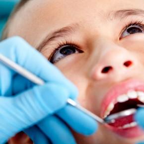 歯ってなんのためにあるの?(1)