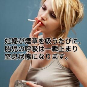 タバコのはなし(4)