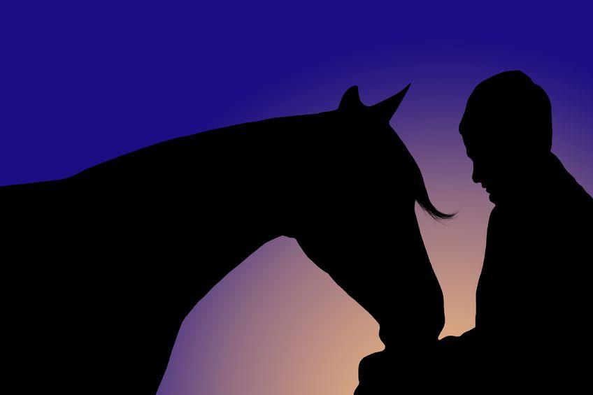 信頼し合う、人と馬。