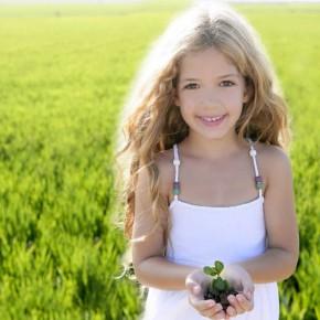 教育について考える(1)| 木を植える