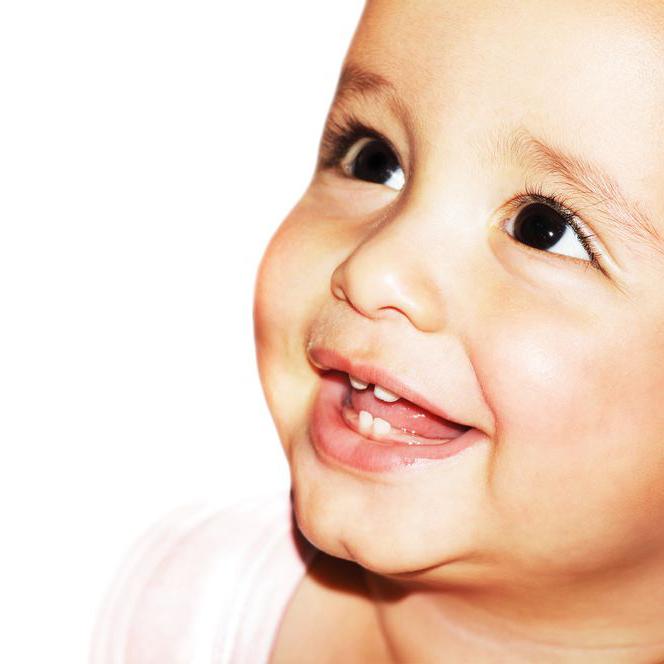 赤ちゃんの歯